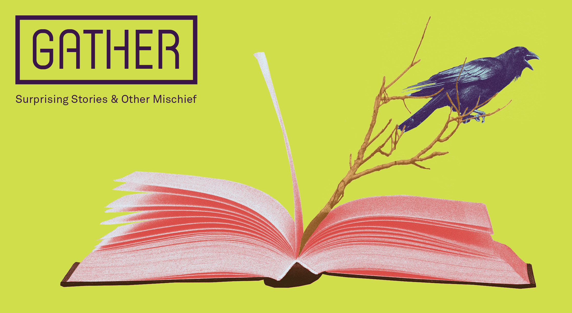 Gather: Surprising Stories & Other Mischief